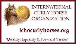 International Curly Horse Organization